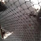 Jaring Kandang Ayam Sebagai Pengganti Jaring Kawat atau Bambu