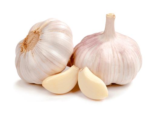 Bawang Putih tidak hanya menjadi bahan dapur saja, tetapi juga bisa menjadi ramuan herbal obat penyakit snot pada ayam   gambar 2