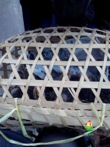 Ayam Kalkun Umur 1 Bulan Kurang Siap di Bawa Pak Gatot ke Purworejo