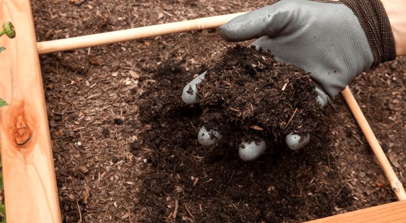 Limbah kotoran ayam yang telah diberi EM4 dapat menyuburkan tanah | Pupuk Tanah