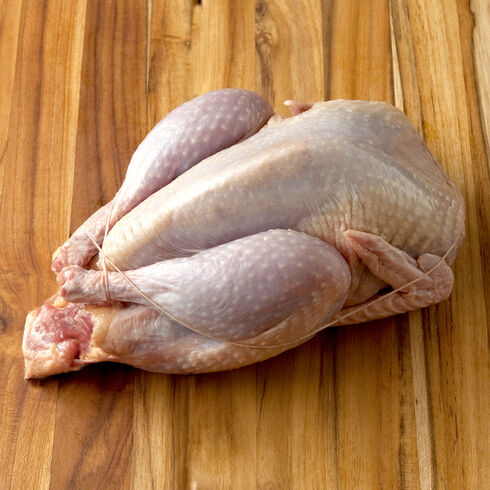 pheasant meat Pheasant meat Jual Ayam Hias HP : 08564 77 23 888 | BERKUALITAS DAN TERPERCAYA Pheasant meat Pheasant Meat : It's Time To Eat Delicious Meat With Low Calories But Rich In Protein, B Vitamins, Iron, And Potassium