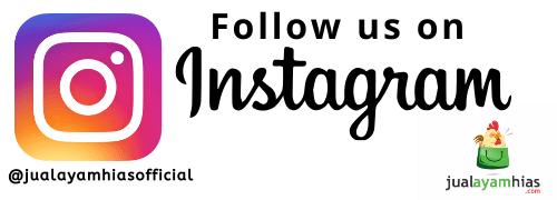 Follow us on 1 Jual Ayam Hias HP : 08564 77 23 888 | BERKUALITAS DAN TERPERCAYA Hubungi Kami