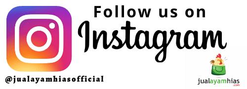Logo Instagram @jualayamhiasofficial
