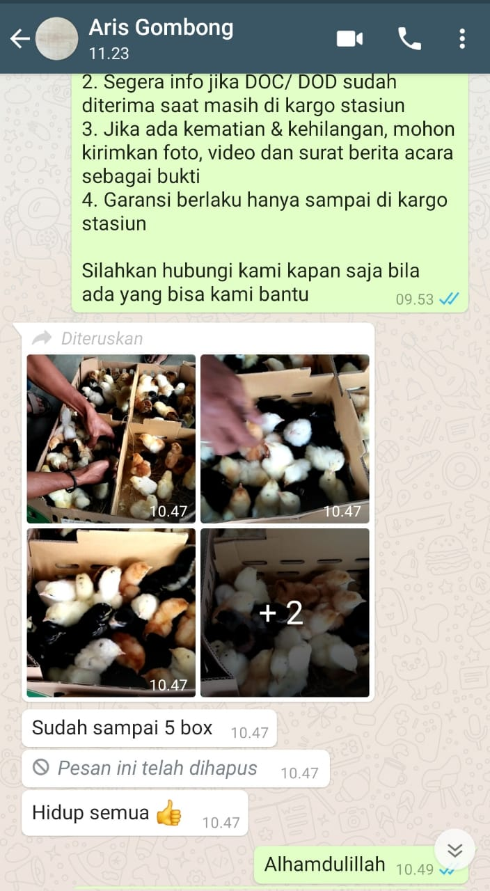 Testimoni Pak Aris Gombong