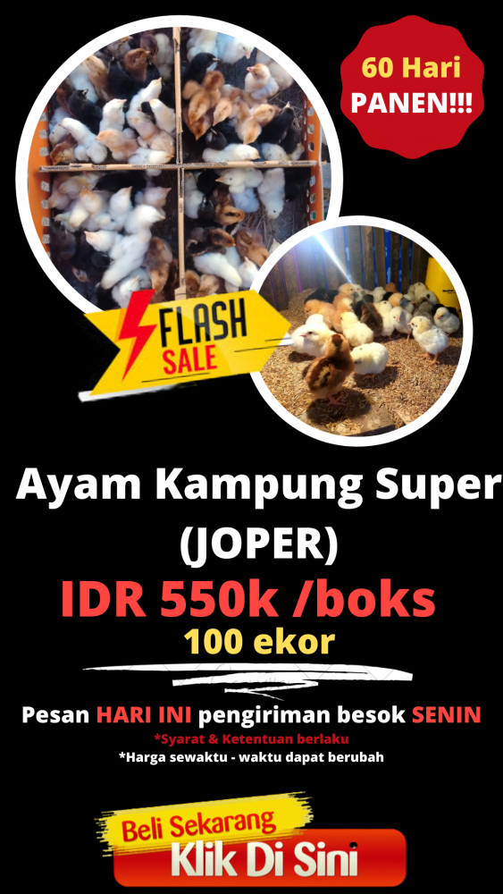 #promo harga JOPER (1)