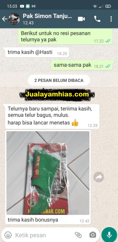 Pak Simon Telur kalkun telur pelung Tanjung Pandan testimoni jualayamhias Jual Ayam Hias HP : 08564 77 23 888 | BERKUALITAS DAN TERPERCAYA testimoni jualayamhias Testimoni Jualayamhias